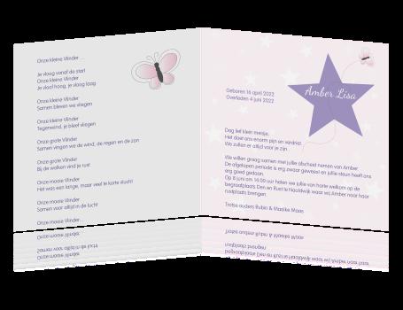 Voorkeur Ingetogen kaartje overlijden baby met vlinder gedicht IX18